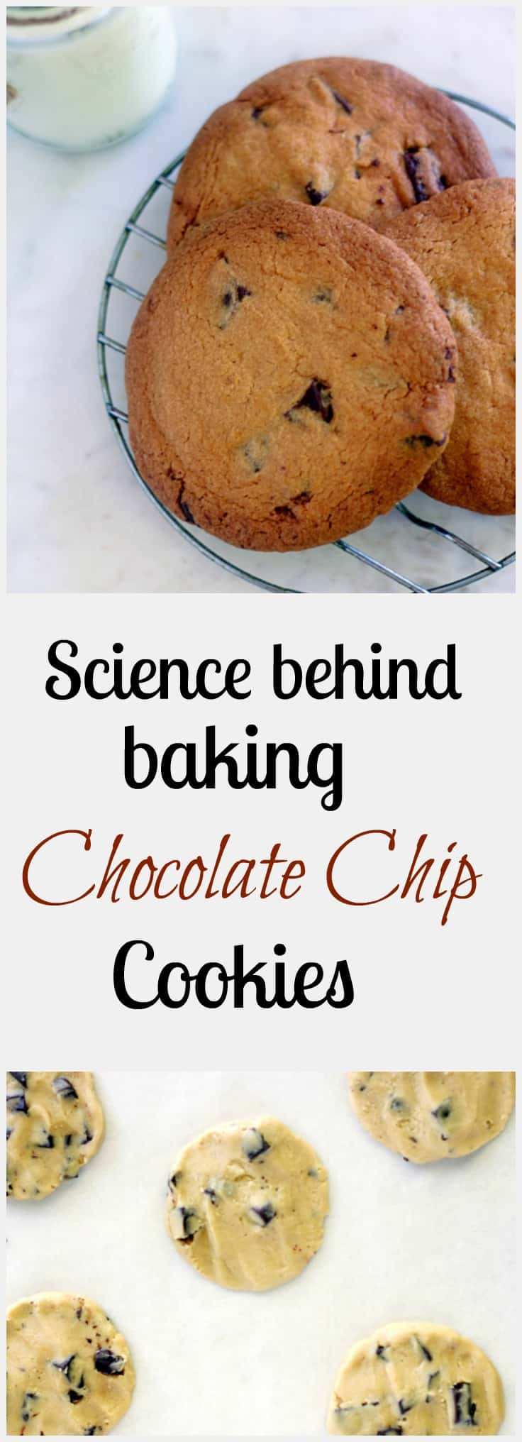 science-behind-chocolate-chip-cookies step by step method of baking cookies with amazing food photography and all the tips and tricks