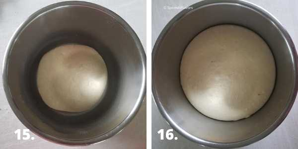 proofing the dough in the instant pot