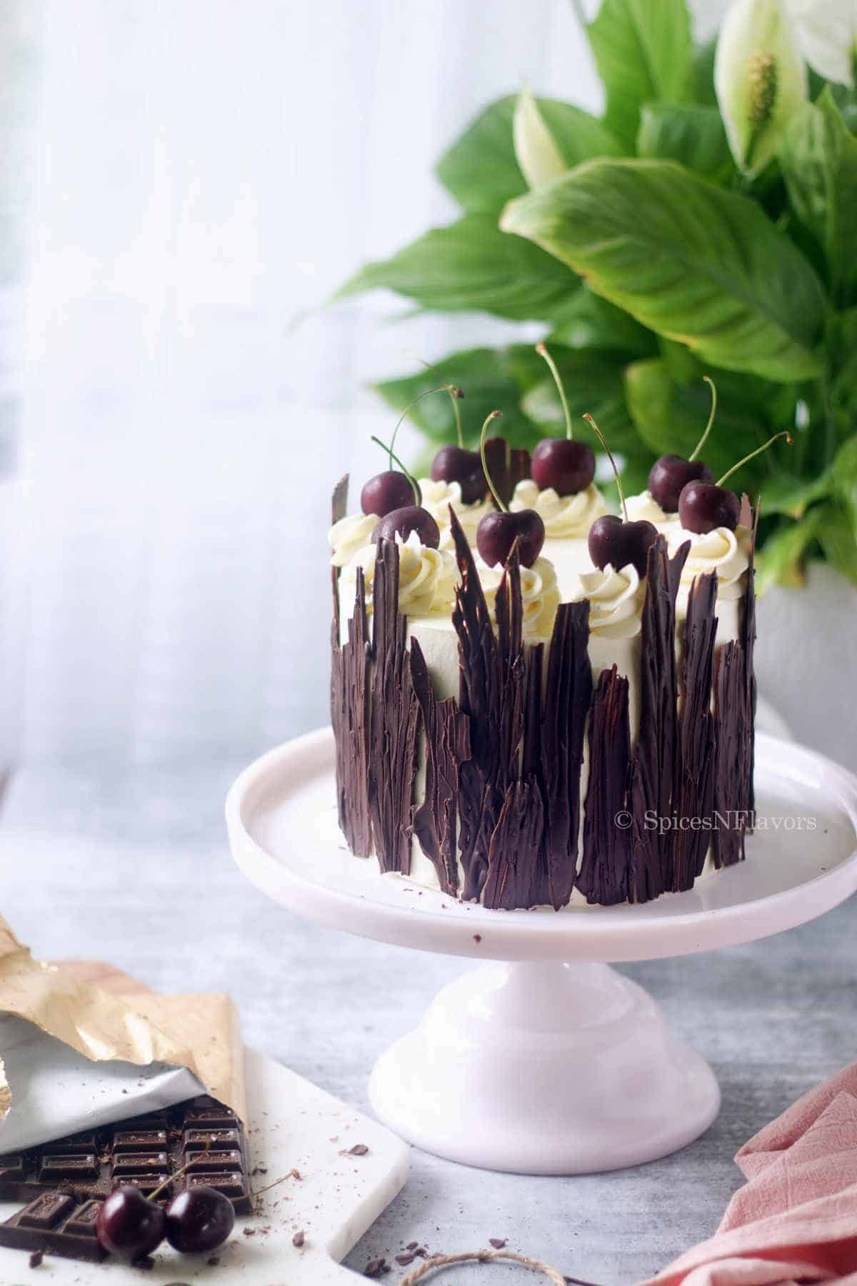 black forest cake placed on a pink cake stand with a green plant in the background